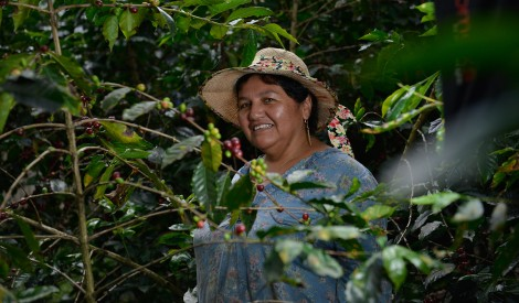 Sandra Romo is a member of a cooperative belonging to FAPECAFES.